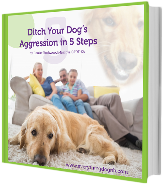 Ditch Your Dog's Aggression